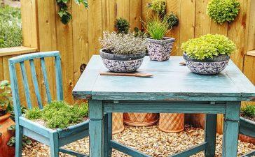 5 tips voor een budgetvriendelijke tuin