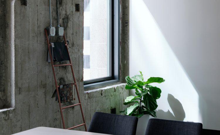 3 voordelen van meer planten op kantoor