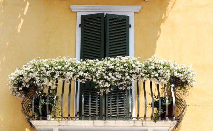 Meer groen op het balkon 3 tips